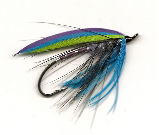 Midnight Spey