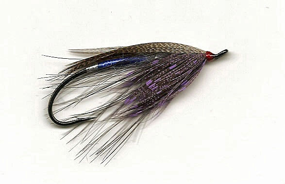 Royal Blue and Bronze Spey